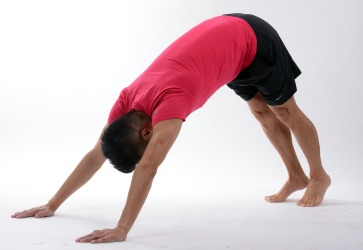 chien dos yoga Lyon
