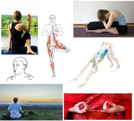 yoga ayurveda lyon