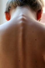 spinal-column-246273_1920