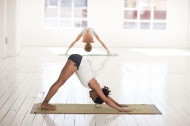 chien yoga dos
