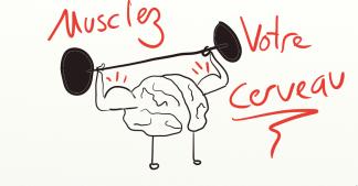 méditation et cerveau