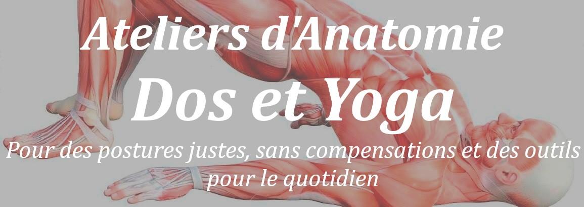 dos yoga anatomie lyon