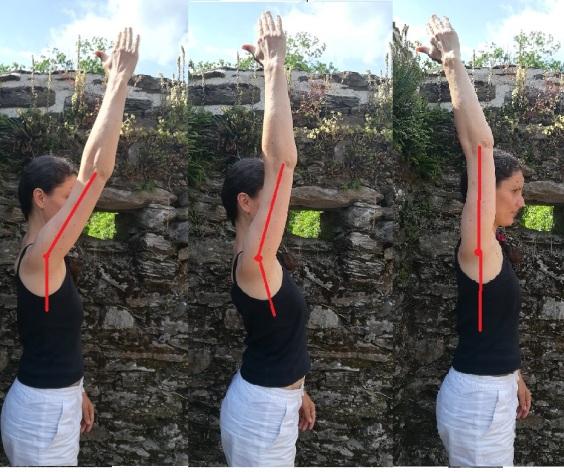 axes des épaules