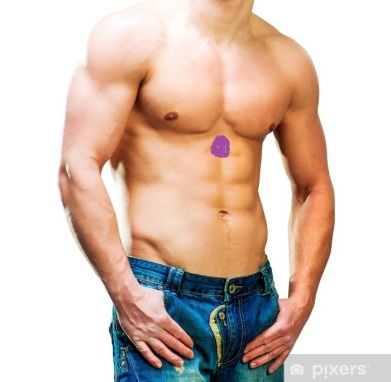homme muscles épaules