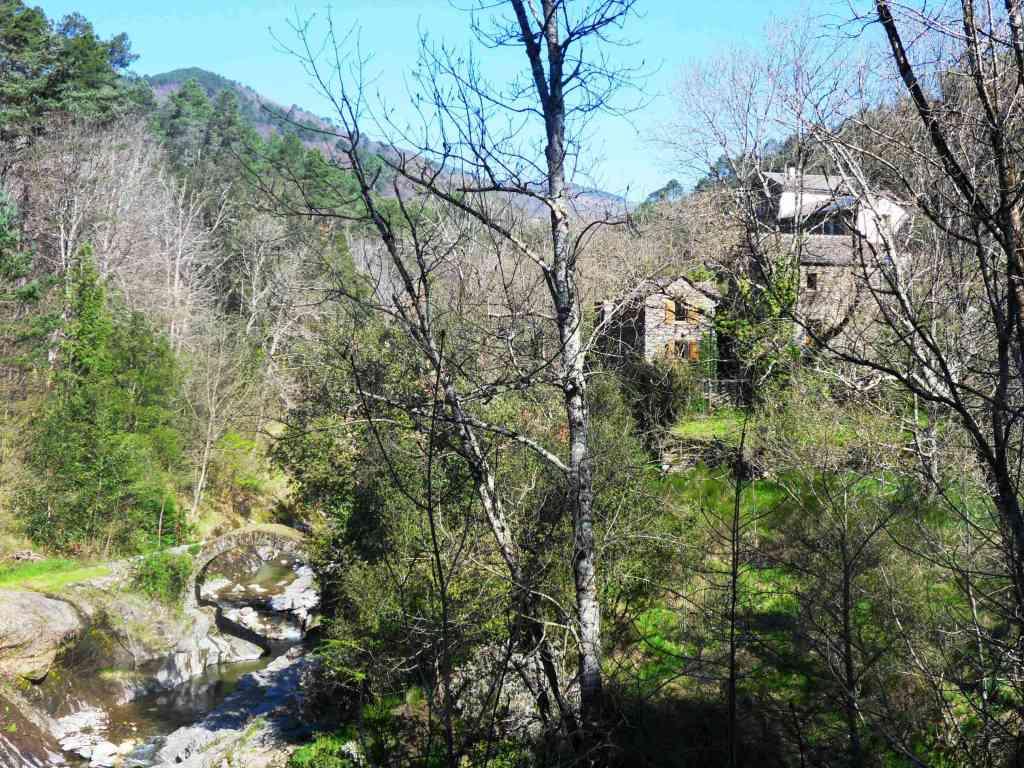 Tgdon nature pont